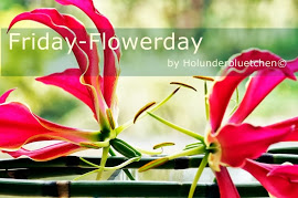 Friday-Flowerday - Holunderbluemchen